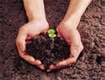 دانلود پروژه سلنیوم و اصلاح الودگی آن در خاک